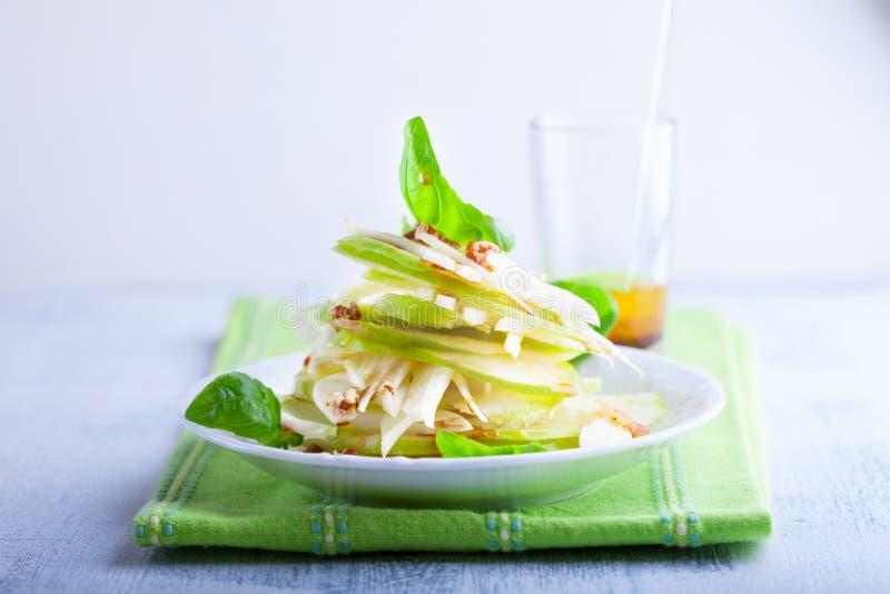 Salade de fenouil et de pomme images libres de droits