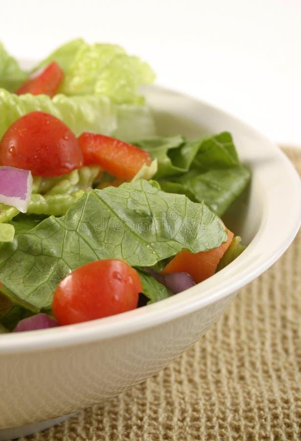 Salade de jardin image libre de droits