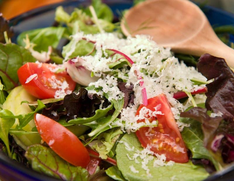 Salade de jardin dans la cuvette bleue image libre de droits