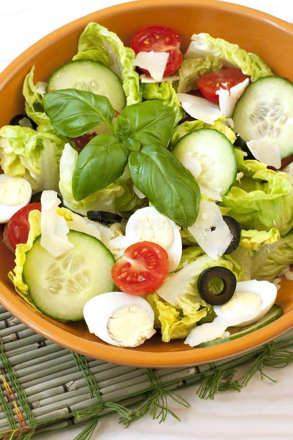 Salade de légume frais de plaque photographie stock