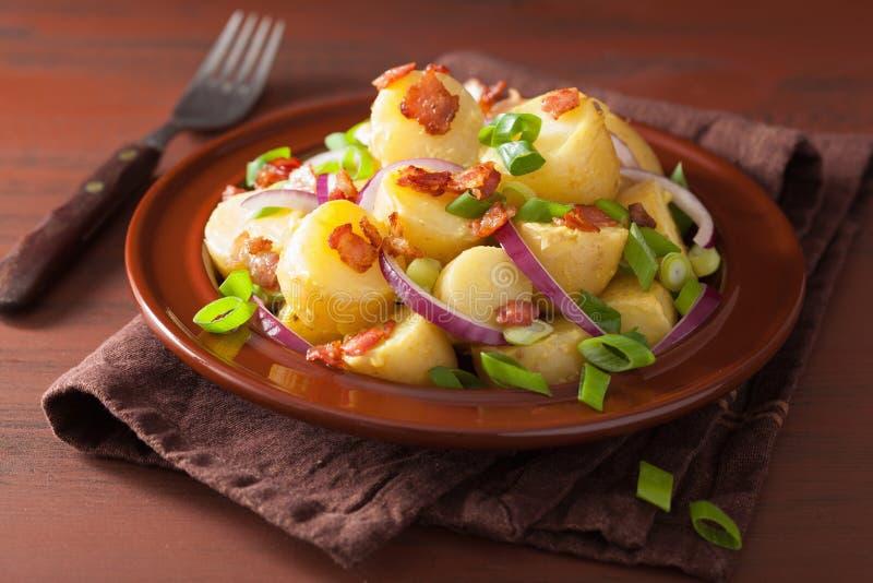 Salade de pomme de terre avec de la moutarde d'oignon de lard image libre de droits