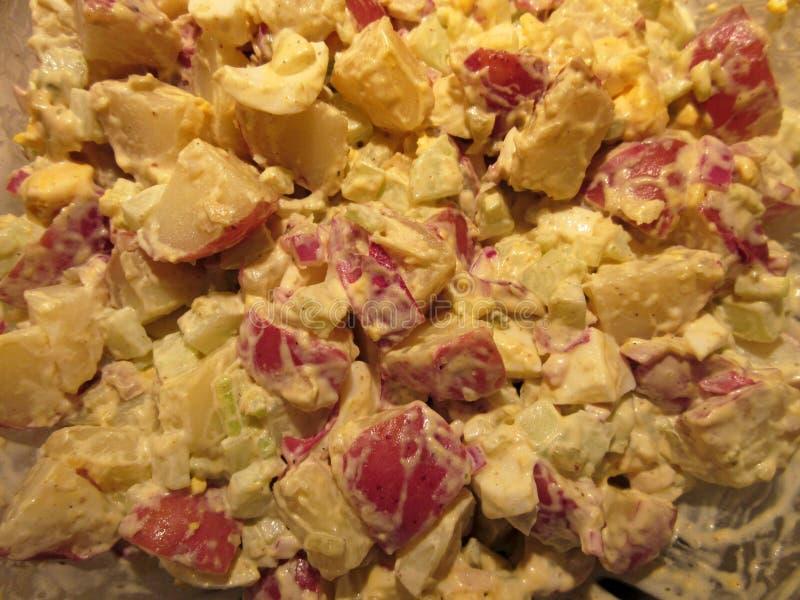 Salade de pomme de terre rouge de peau photo stock
