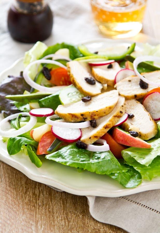 Salade de poulet avec la pomme images libres de droits