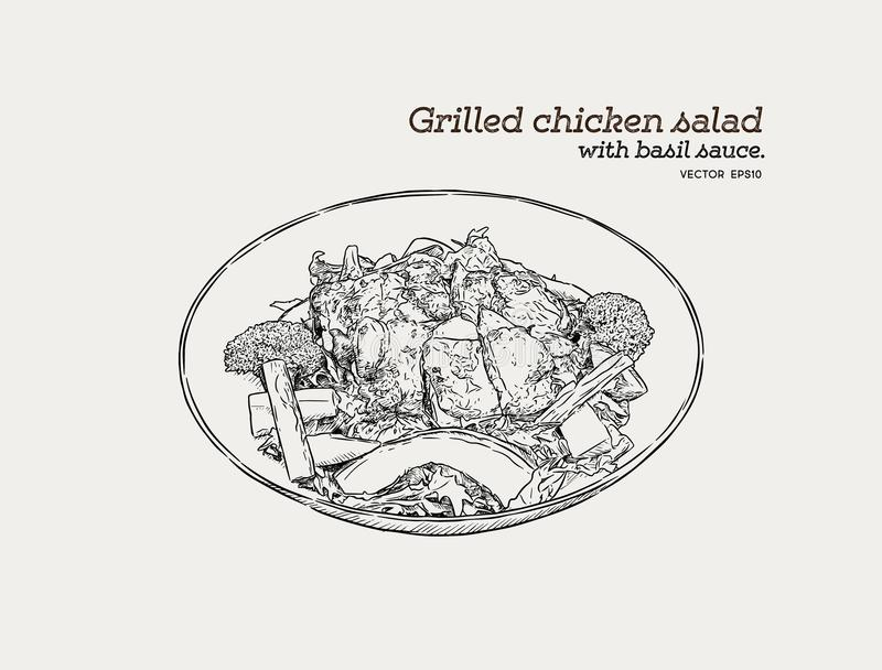 Salade de poulet grillée avec de la sauce à pesto Nourriture VE de croquis d'aspiration de main illustration stock