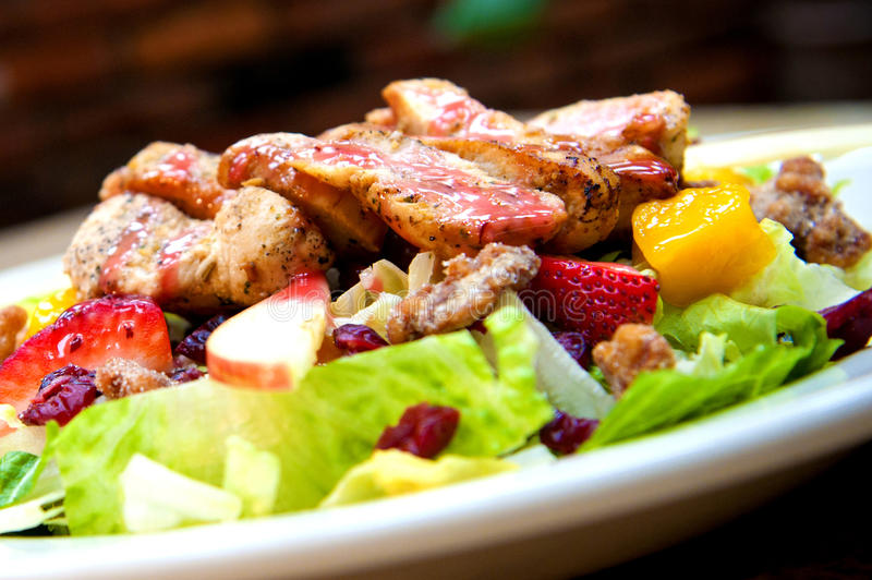 Salade de poulet tropicale de canneberge images stock