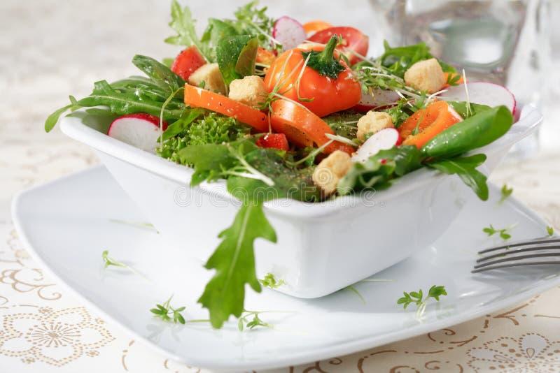 Salade de régime images stock