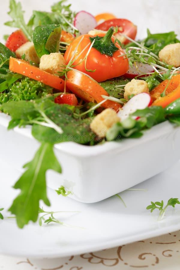 Salade de régime photographie stock