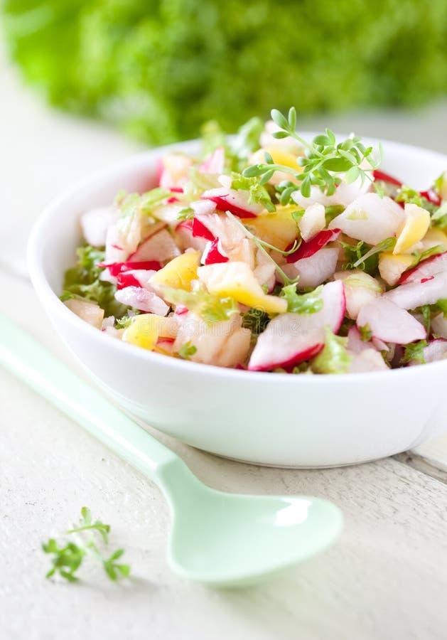 Salade de radis photos libres de droits