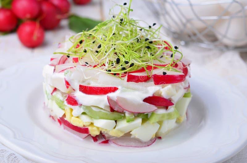 Salade de radis de ressort photo stock