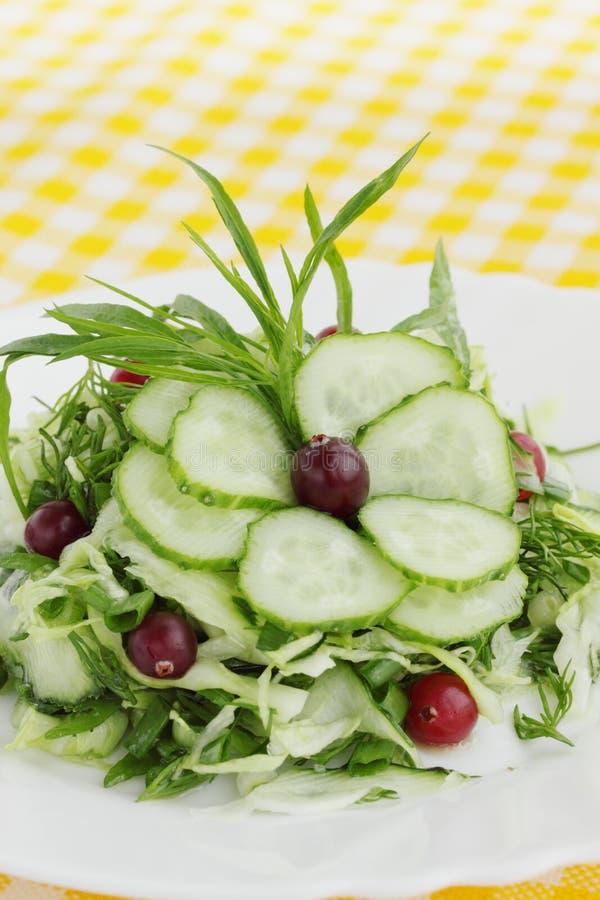Salade de ressort images stock