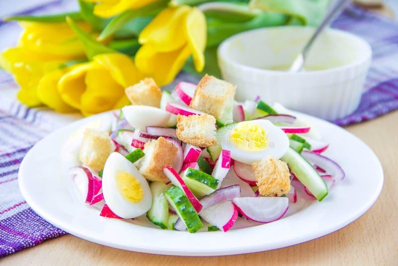 Salade de ressort avec des radis, des concombres, des oeufs et le croûton photo libre de droits