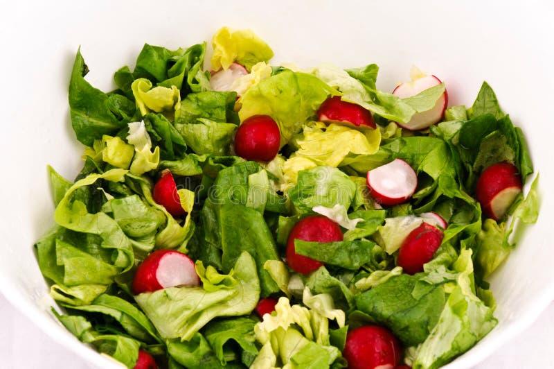 Salade de source photo stock