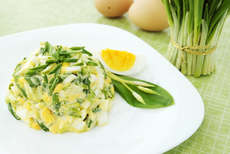 Salade de source avec des oeufs photos stock