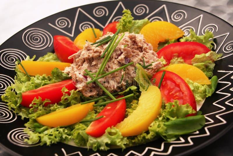 Salade de thon photos libres de droits