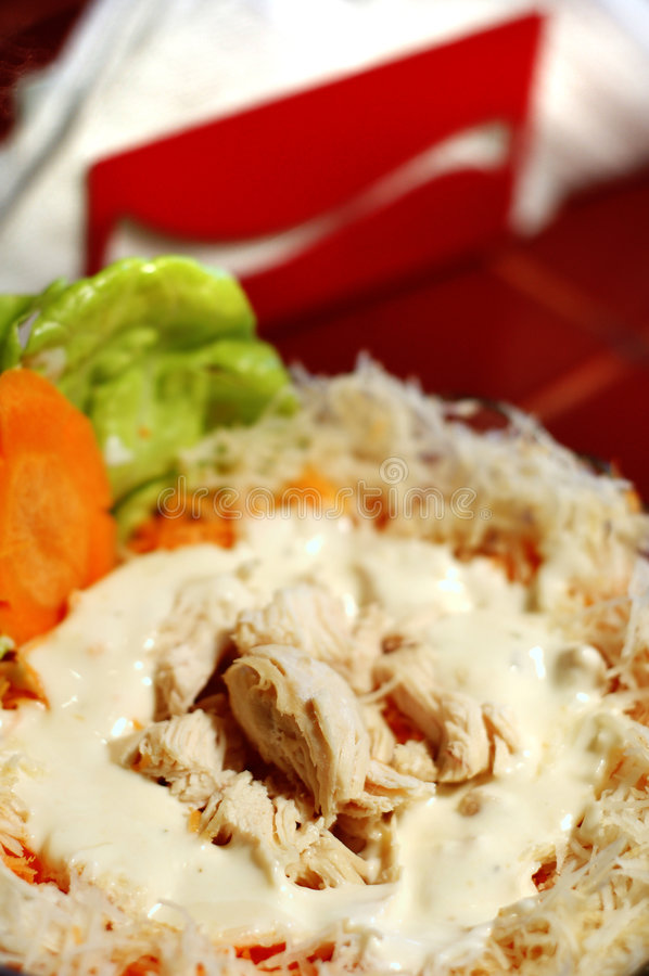 Salade de thon photographie stock