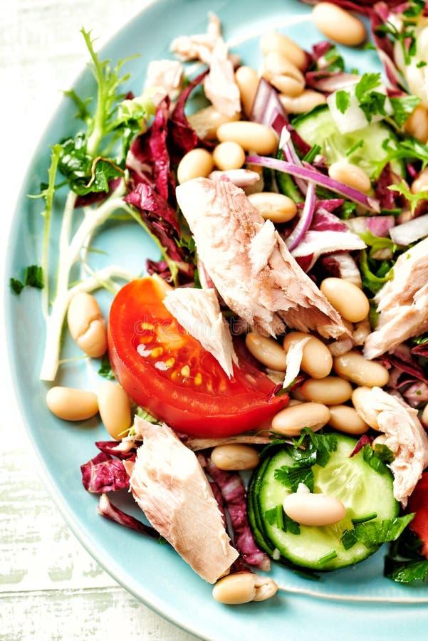 Salade de thon avec l'endive, le radicchio et les haricots blancs image libre de droits