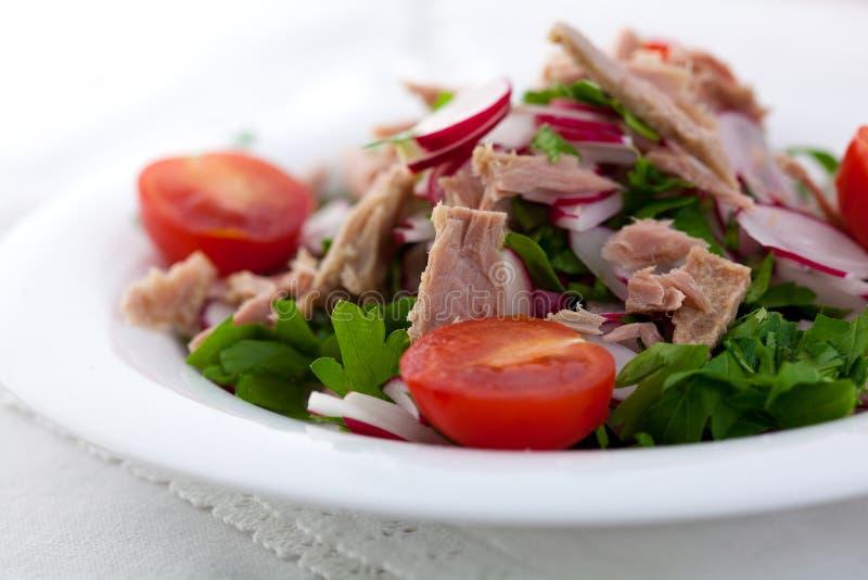 Salade de thon avec le radis photographie stock