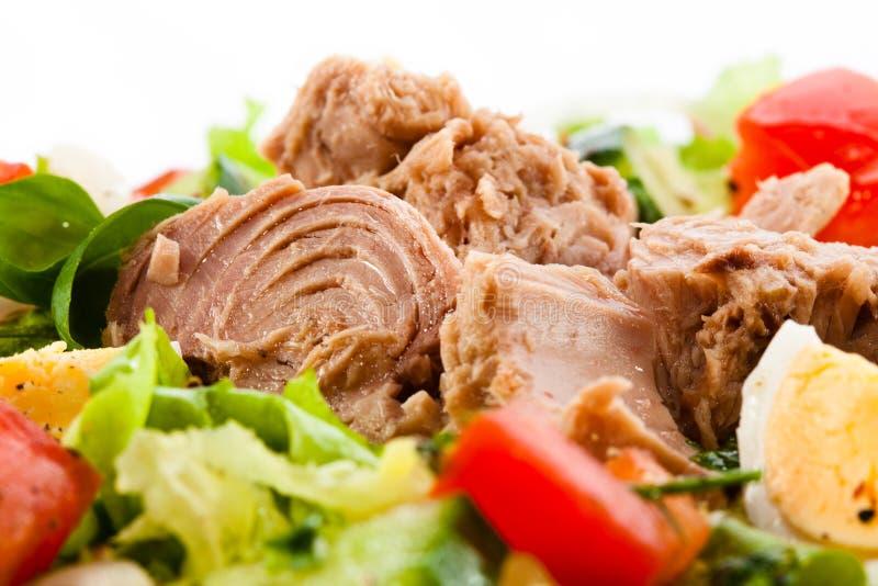 Salade de thon et de légume photographie stock libre de droits