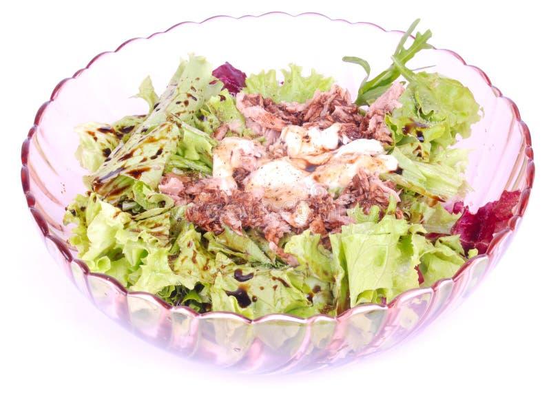 Salade de thon fraîche mélangée image libre de droits