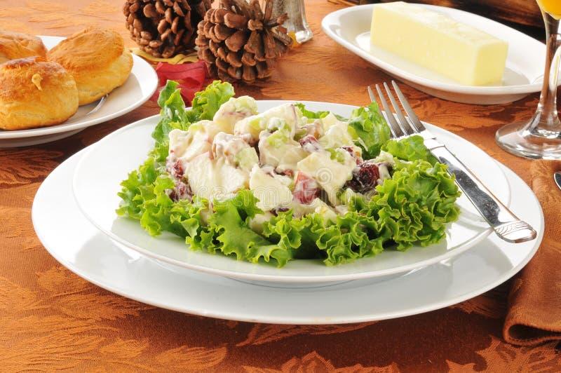 Salade de vacances de Waldorf images stock