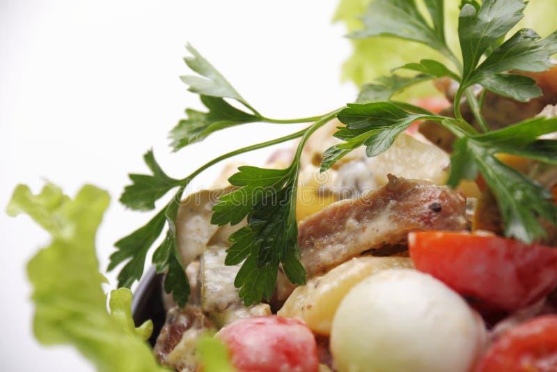 Salade de viande image libre de droits