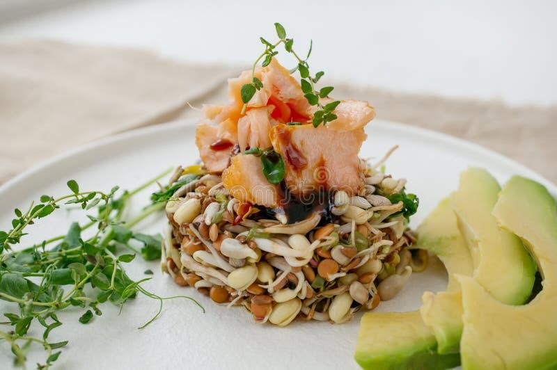 Salade des graines, de la truite et de l'avocat germés Concept macrobiotique de nourriture photos libres de droits