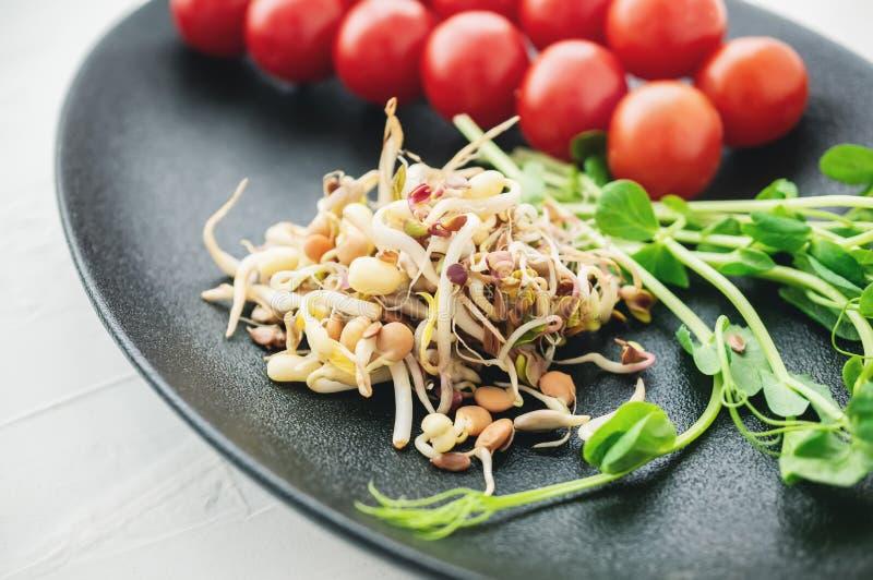 Salade des graines germ?es des lentilles de pois de lin et d'autres grains Concept macrobiotique de nourriture Fin vers le haut images stock
