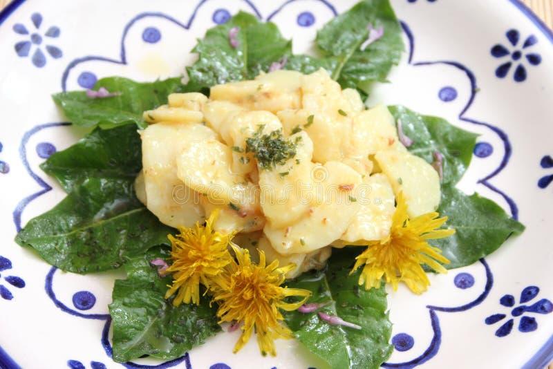 Salade des pommes de terre avec le lard image libre de droits