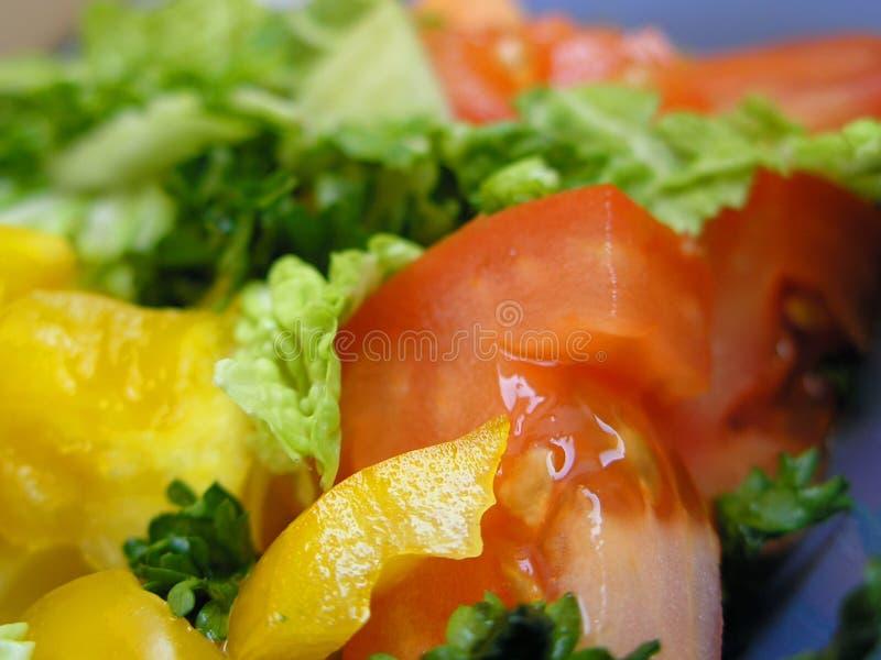Salade diététique d'ingrédients photo stock