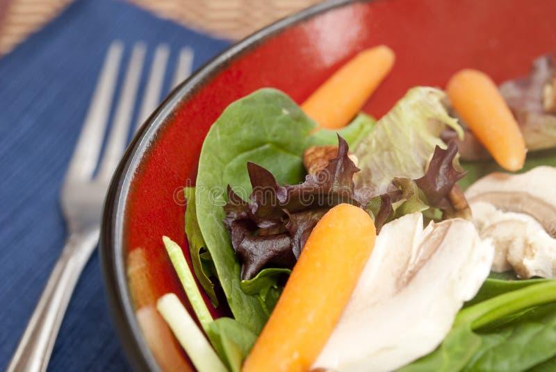 Salade et fourchette image libre de droits