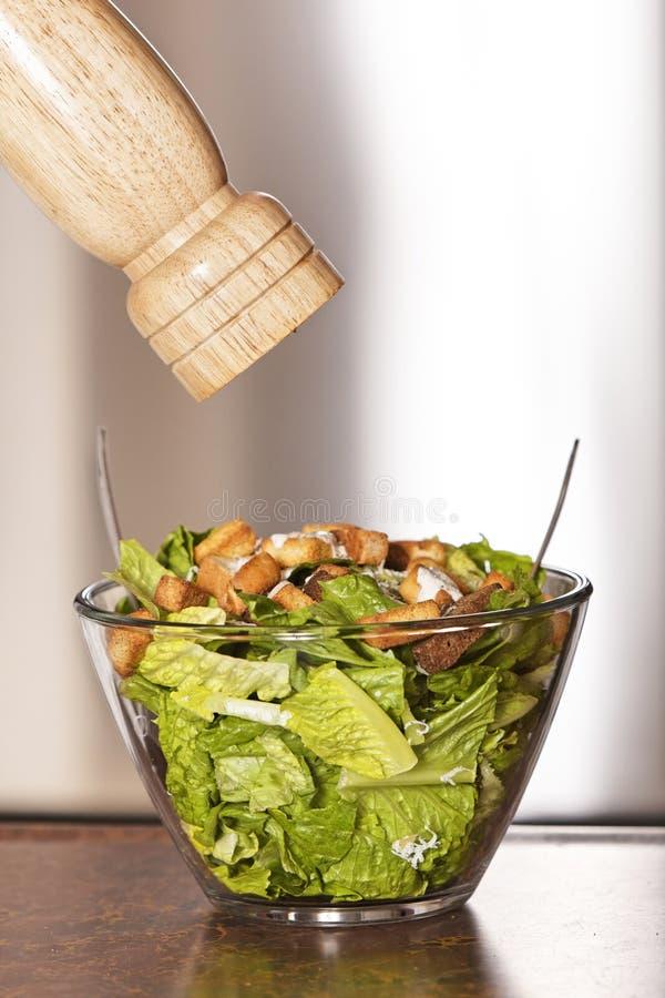 Salade et poivre de César images stock