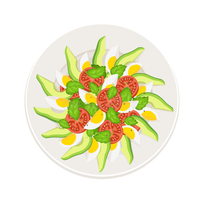 Salade fraîche illustration stock