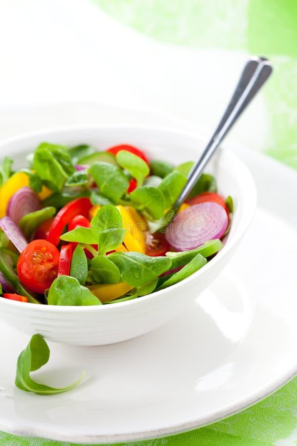 Salade fraîche avec des légumes image libre de droits