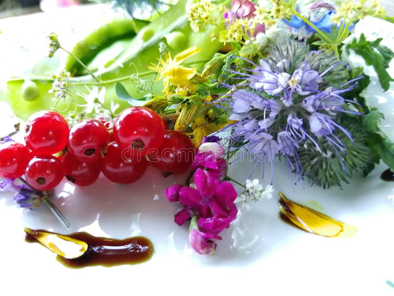 Salade fraîche crue photographie stock libre de droits