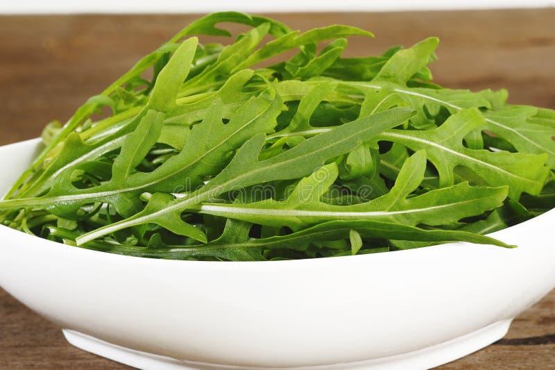 Salade fraîche de Rucola images libres de droits