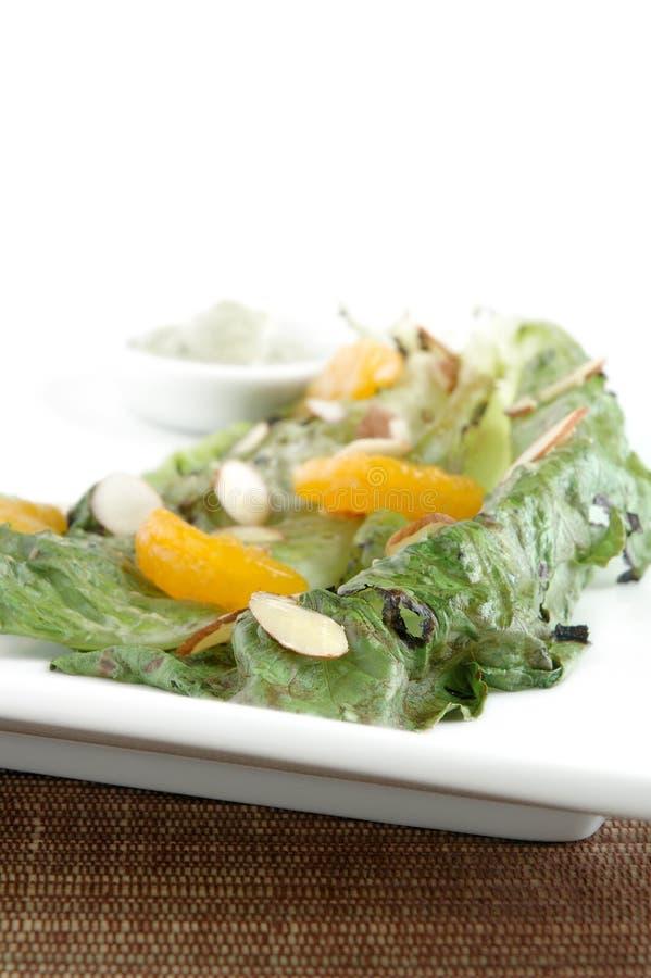 Salade grillée de romaine images libres de droits