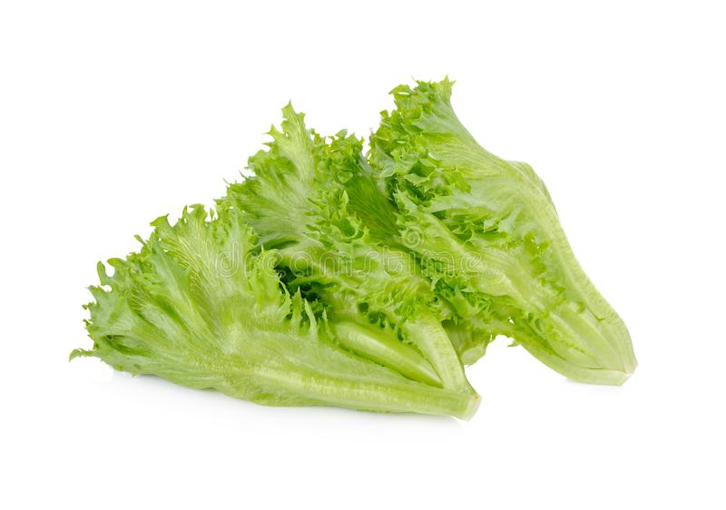Salade 'Iceberg' fraîche de Frillice sur le fond blanc image stock