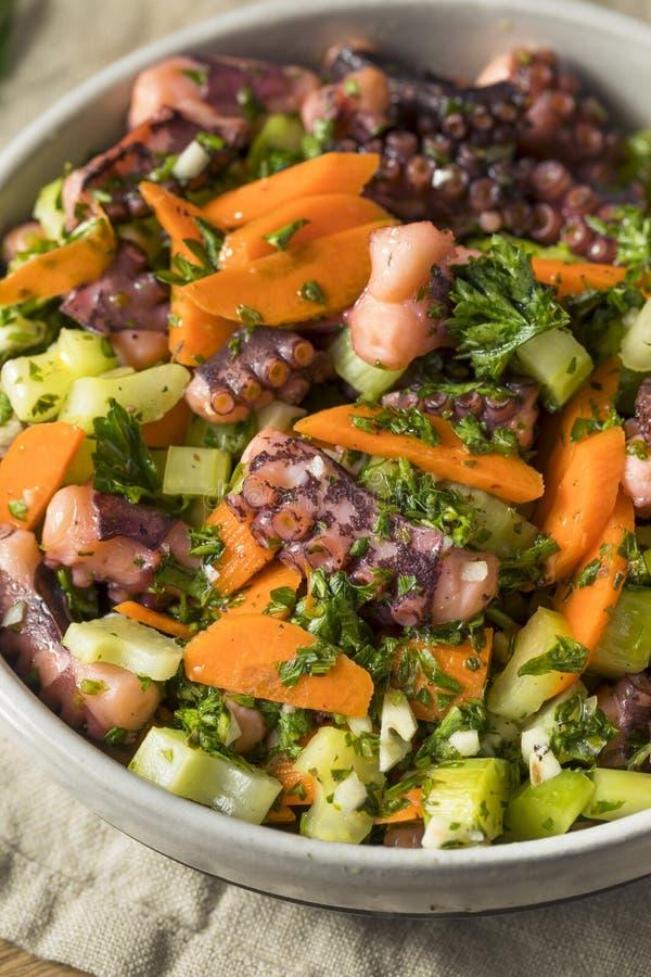 Salade méditerranéenne faite maison de poulpe image libre de droits
