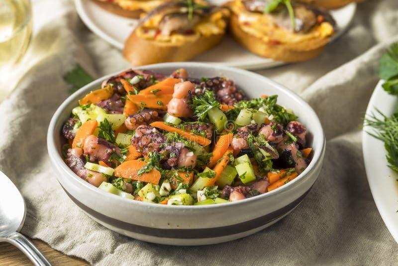 Salade méditerranéenne faite maison de poulpe photos stock