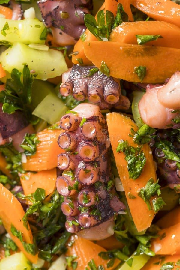 Salade méditerranéenne faite maison de poulpe image stock