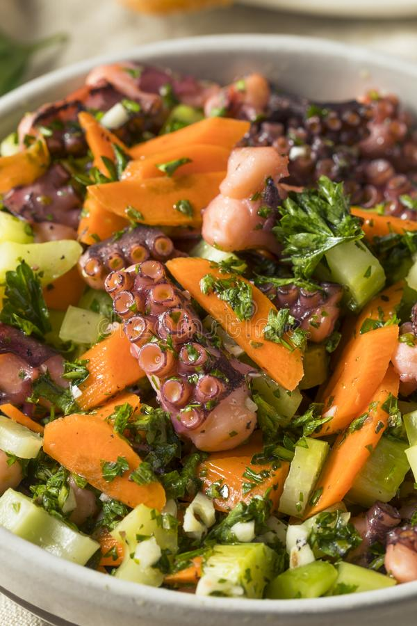 Salade méditerranéenne faite maison de poulpe images stock