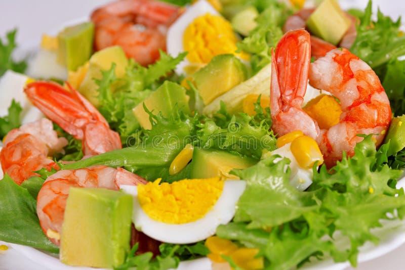Salade met garnalen en avocado stock afbeeldingen