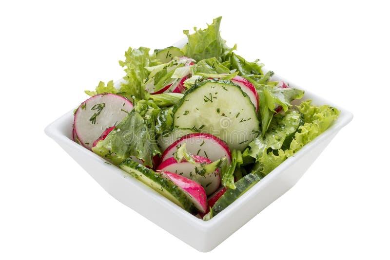 Salade met greens, radijs en komkommer royalty-vrije stock afbeelding