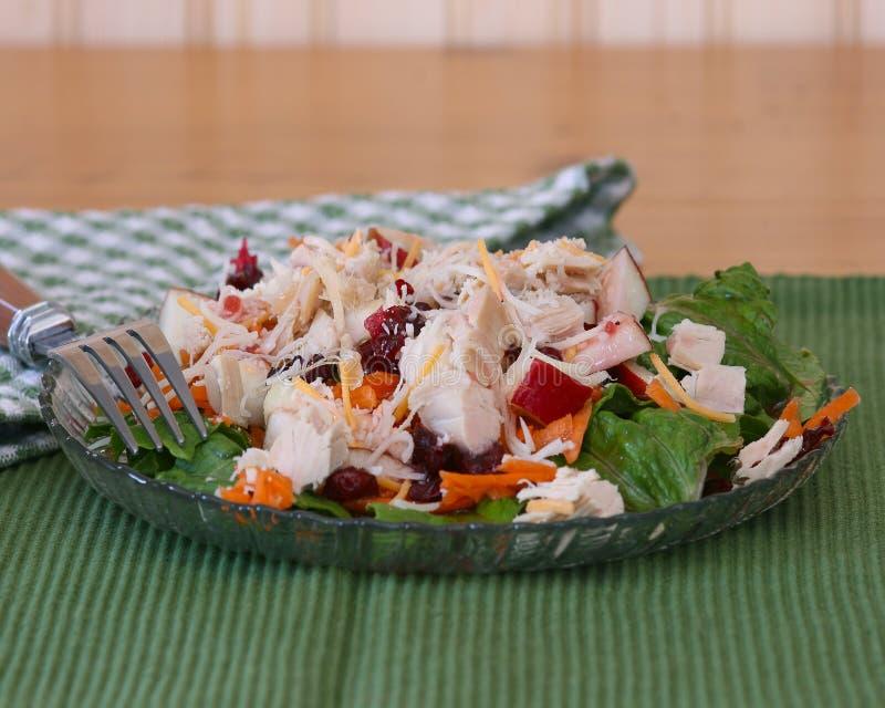 Salade met Turkije stock afbeelding