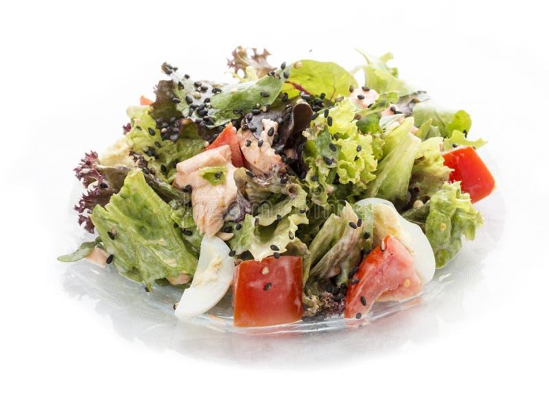 Salade met zalm en groenten met oestersaus stock afbeelding