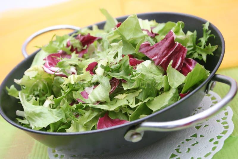 Salade mixte photos stock