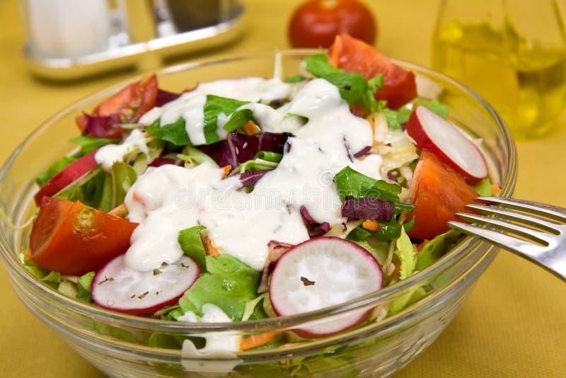 Salade mixte fraîche avec le concombre, radis images stock