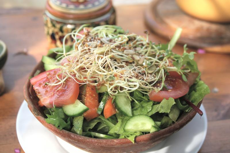 Salade organique images libres de droits