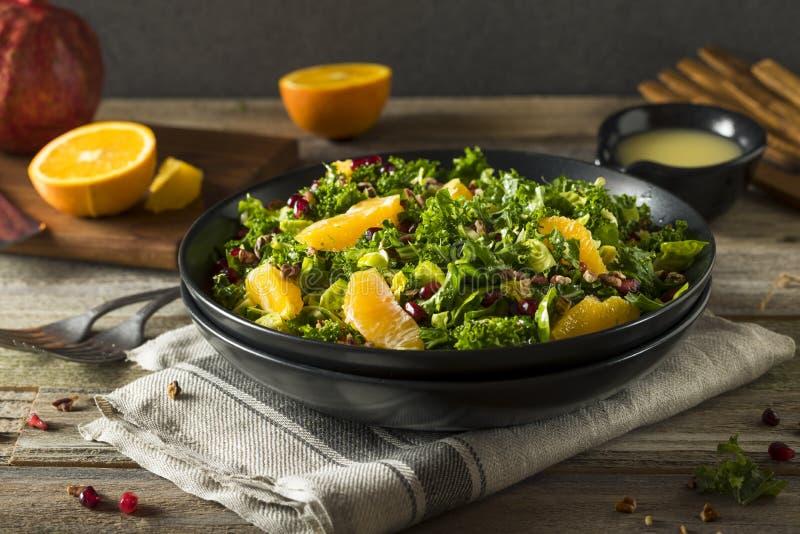 Salade saine crue d'hiver de chou frisé photographie stock libre de droits