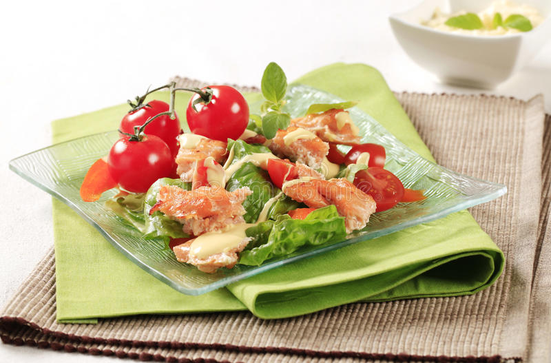Salade saumonée photos stock